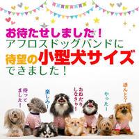 ANIMAL BALANCE BAND 【Sサイズ】新登場!!
