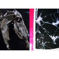 [サイン入り] SAIKO OTAKE: SAMPLING#09