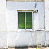 green (window)/プリント