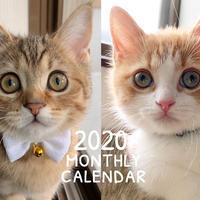 【送料無料】2020年『mirimogu』壁掛けカレンダー