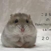 【送料無料】2020年『こまるん』壁掛けカレンダー