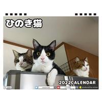 【予約販売】 ひのき猫 2022年 卓上 カレンダー TC22112