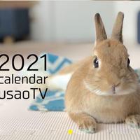 【予約販売】 うさぎ うちのウサ 2021年 壁掛けカレンダー KK21031