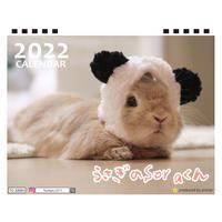 【予約販売】 うさぎのSORAくん 2022年 卓上 カレンダー TC22050