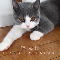 【送料無料】2020年『福太郎』壁掛けカレンダー