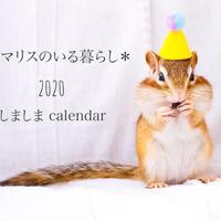 【送料無料】2020年『しましま』壁掛けカレンダー