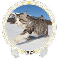 【予約販売】 旅猫 ニャン吉 2022年 イヤープレート皿立て付き PU2207