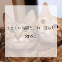 【送料無料】2020年『やさしい時間とねこ暮らし』壁掛けカレンダー