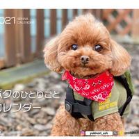 【予約販売】 プードル dino&sena 2021年 卓上カレンダー TC21049