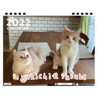 【予約販売】 猫 s.yukichii&sasuke 2022年 卓上 カレンダー TC22043