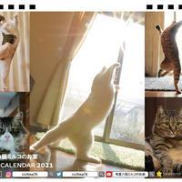 【予約販売】 無重力猫 ミルコのお家 2021年 卓上カレンダー TC21035