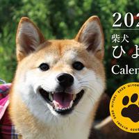 【送料無料】2020年『柴犬ひより』壁掛けカレンダー