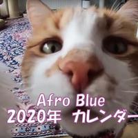 【送料無料】2020年『afroblue』壁掛けカレンダー