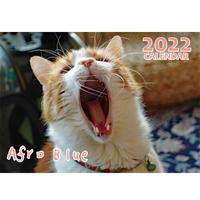 【予約販売】 猫のアフロブルー afroblue 2022年 壁掛け カレンダー KK22148