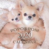 【送料無料】2020年『POPO&POM』壁掛けカレンダー