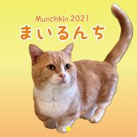 【予約販売】 猫 まいるんちの毎日 2021年 壁掛けカレンダー KK21041