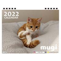 【予約販売】 猫のmugi 2022年 卓上 カレンダー TC22060