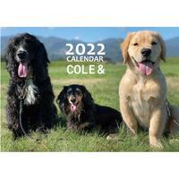 【予約販売】 ゴールデンレトリバー こーる君たち 2022年 壁掛け カレンダー KK22126