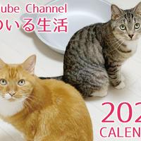 【送料無料】2020年『猫のいる生活』壁掛けカレンダー