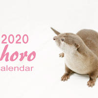 【送料無料】2020年『chiro』壁掛けカレンダー