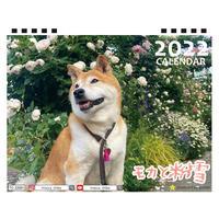 【予約販売】 柴犬 モカと粉雪 2022年 卓上 カレンダー TC22095