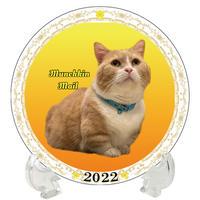 【予約販売】 猫 まいるんち 2022年 イヤープレート皿立て付き PU2205