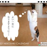 【予約販売】 猫式  2021年 卓上カレンダー TC21129