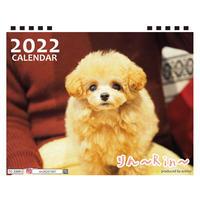 【予約販売】 トイプードル りん ~Rin~ 2022年 卓上 カレンダー TC22066