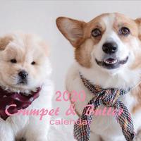 【送料無料】2020年『crumpet&butter』壁掛けカレンダー