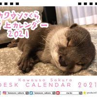 【予約販売】 カワウソ さくら 2021年 卓上カレンダー TC21028