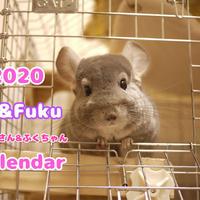 【送料無料】2020年『Toi&Fuku』壁掛けカレンダー