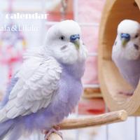 【送料無料】2020年『lilala&lilulu』壁掛けカレンダー