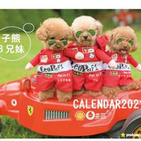 【予約販売】 トイプードル 子熊3兄妹 2021年 卓上カレンダー TC21040