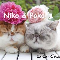 【送料無料】2020年『niko&poko』壁掛けカレンダー