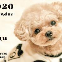 【送料無料】2020年『amu』壁掛けカレンダー