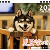 【予約販売】 黒豆柴 こむぎ 2021年 卓上カレンダー TC21102
