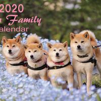 【送料無料】2020年『LINNファミリー』壁掛けカレンダー