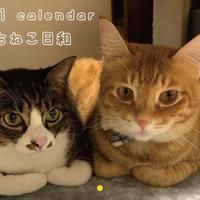【予約販売】 うちねこ日和 2021年 壁掛けカレンダー KK21017