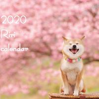 【送料無料】2020年『riri』壁掛けカレンダー