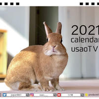 【予約販売】 うさぎ うちのウサ 2021年 卓上カレンダー TC21032