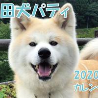 【送料無料】2020年『秋田犬パティ』壁掛けカレンダー