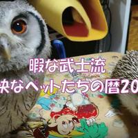 【送料無料】2020年『暇な武士流愉快なペットたちの暦』壁掛けカレンダー