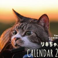 【送料無料】2020年『リキちゃんねる』壁掛けカレンダー