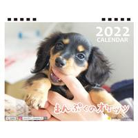 【予約販売】 ミニチュアダックス まんぷくのオケッツ 2022年 卓上 カレンダー TC22121