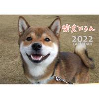 【予約販売】 柴犬めろん 2022年 壁掛け カレンダー KK22028