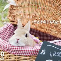【送料無料】2020年『うさぎのいなり』壁掛けカレンダー