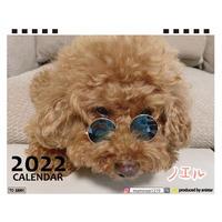【予約販売】 トイプードル ノエル 2022年 卓上 カレンダー TC22086