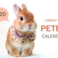 【送料無料】2020年『うさぎのピーター』壁掛けカレンダー