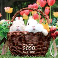 【送料無料】2020年『まり坊&ゆきんこ』壁掛けカレンダー