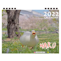 【予約販売】 アヒルのHARU 2022年 卓上 カレンダー TC22063